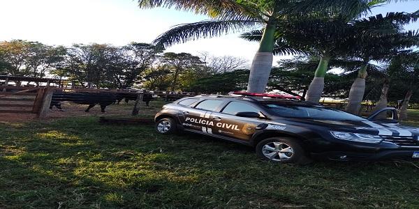 Segurança rural: Polícia Civil recupera nove cabeças de gado furtadas, em Morrinhos